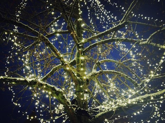 snow's silence and the sience of sleep